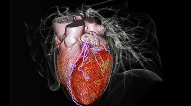 Fujifilm Sistemi Medicali Elearning HUB - Medical Informatics